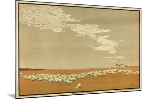 A Flock of Merino Sheep - Australia, from the Series 'Australia's Wealth of Wheat and Wool'-Archibald Bertram Webb-Mounted Giclee Print