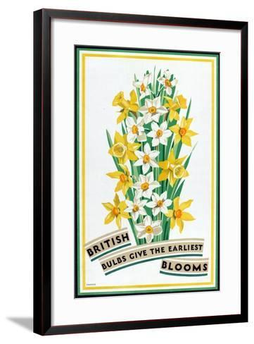 British Bulbs Give the Earliest Blooms, from the Series 'British Bulbs for Home Gardens'- Fawkes-Framed Art Print
