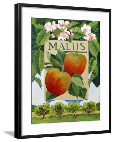 Malus (Apple), 2014-Jennifer Abbott-Framed Art Print