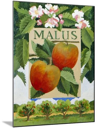 Malus (Apple), 2014-Jennifer Abbott-Mounted Giclee Print