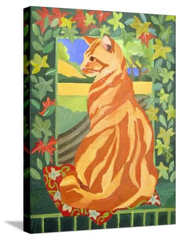 Cat 1, 2014-Jennifer Abbott-Stretched Canvas Print