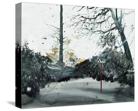 Bird Box, Ohlsdorf Cemetery, 2013-Calum McClure-Stretched Canvas Print