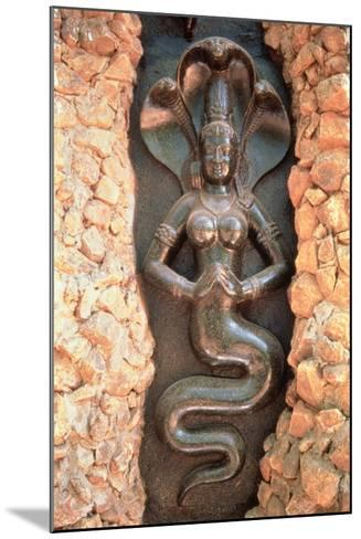 Relief from the Snake Garden--Mounted Photographic Print