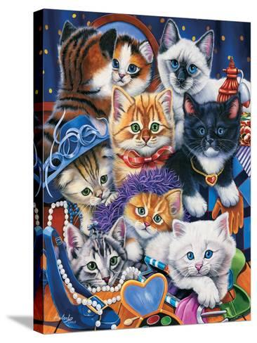 Kittens in Closet-Jenny Newland-Stretched Canvas Print