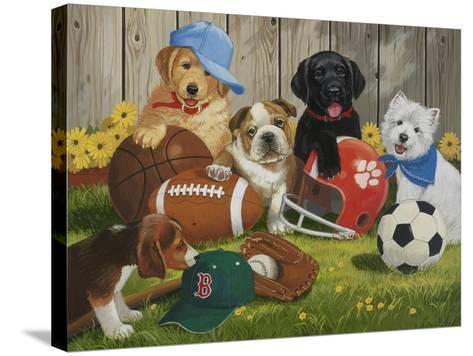 Let's Play Ball-William Vanderdasson-Stretched Canvas Print