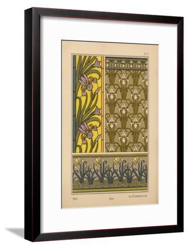 Iris--Framed Art Print