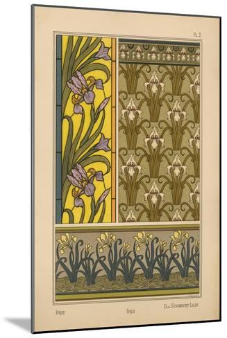 Iris--Mounted Giclee Print