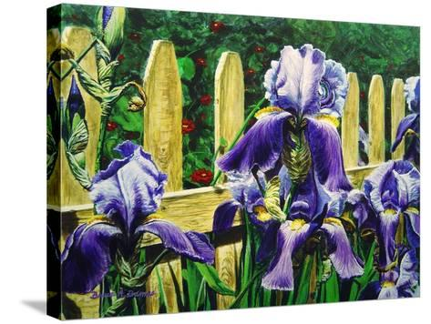 Iris' by the Fence-Bruce Dumas-Stretched Canvas Print