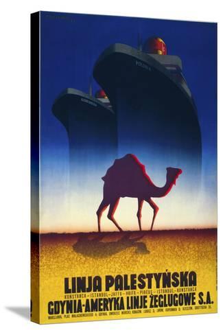 Linja Palestynska--Stretched Canvas Print
