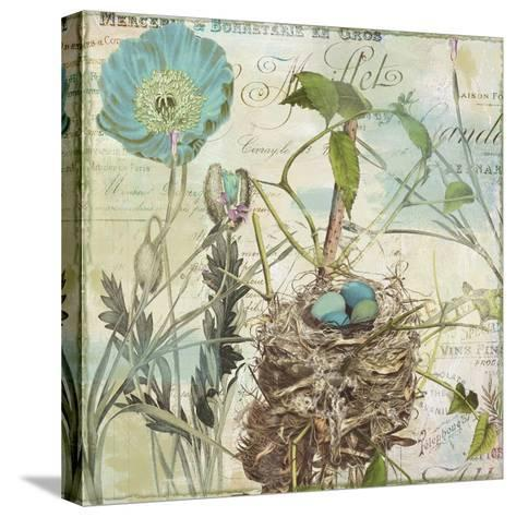 Nesting I--Stretched Canvas Print