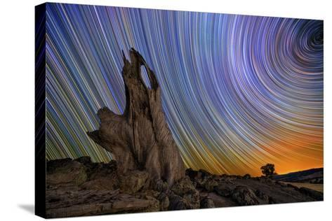 Metcalf Stump-Lincoln Harrison-Stretched Canvas Print