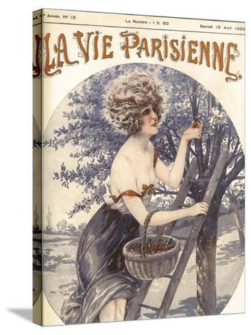 Lavie Parisenne Cherry Picking--Stretched Canvas Print
