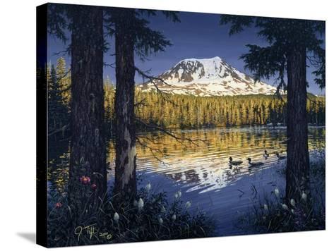 Mt Adams-Jeff Tift-Stretched Canvas Print