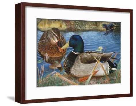 Mallards-Rusty Frentner-Framed Art Print
