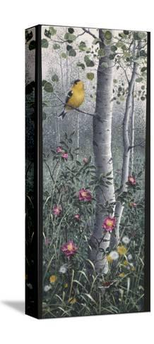 Shades of Summer-Jeff Tift-Stretched Canvas Print