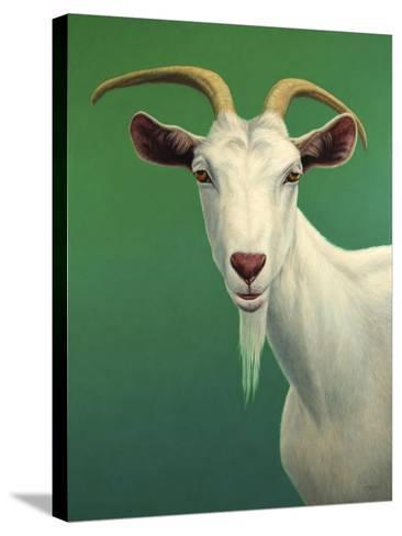 Portrait of a Goat-James W. Johnson-Stretched Canvas Print