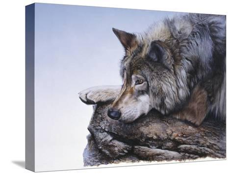 On the Edge-Rusty Frentner-Stretched Canvas Print