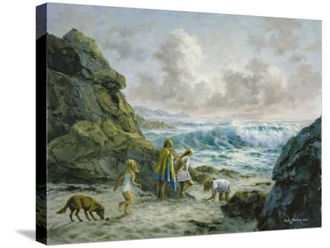 Once Upon a Time-Nicky Boehme-Stretched Canvas Print