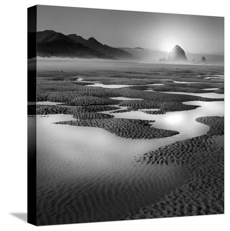 Path-Moises Levy-Stretched Canvas Print