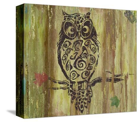 Owl-Karen Williams-Stretched Canvas Print