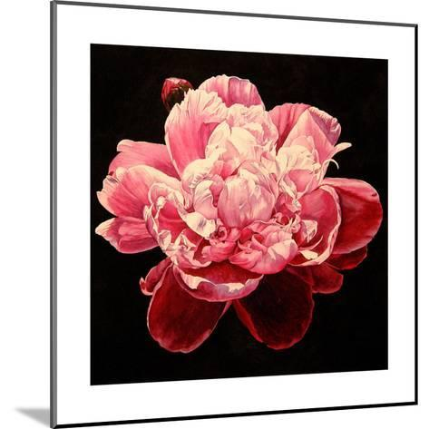 Peony - Explosion-Laurin McCracken-Mounted Giclee Print