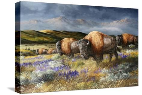 Spring Storm's Passing-Trevor V. Swanson-Stretched Canvas Print