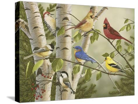 Summer Friends-William Vanderdasson-Stretched Canvas Print
