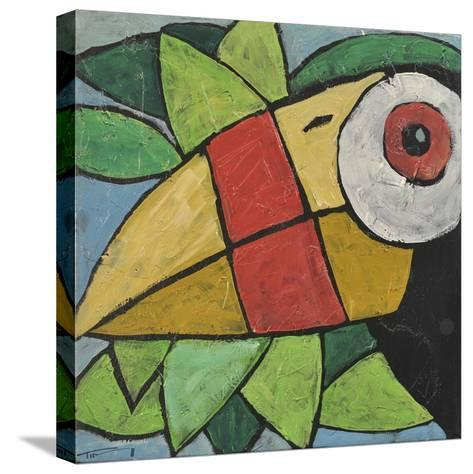 Toucan-Tim Nyberg-Stretched Canvas Print