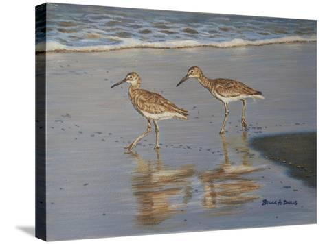 Shore Walkers-Bruce Dumas-Stretched Canvas Print
