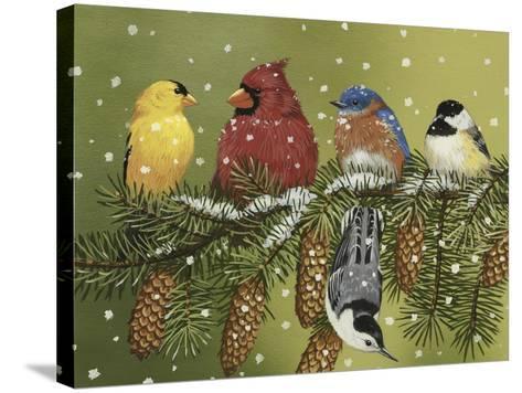 Snowy Feathered Friends-William Vanderdasson-Stretched Canvas Print