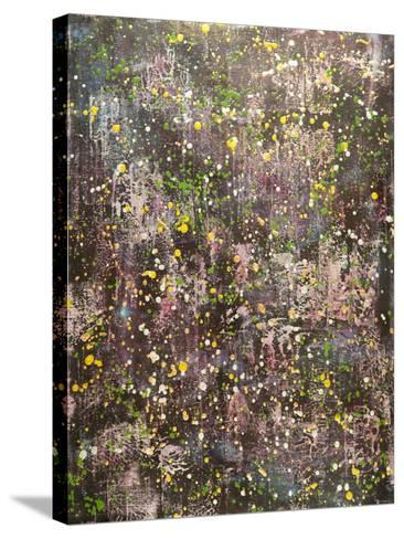 Universal Entropy-Hilary Winfield-Stretched Canvas Print