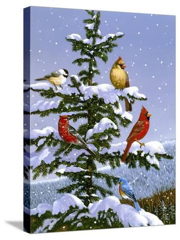 Songbirds on a Limb-William Vanderdasson-Stretched Canvas Print