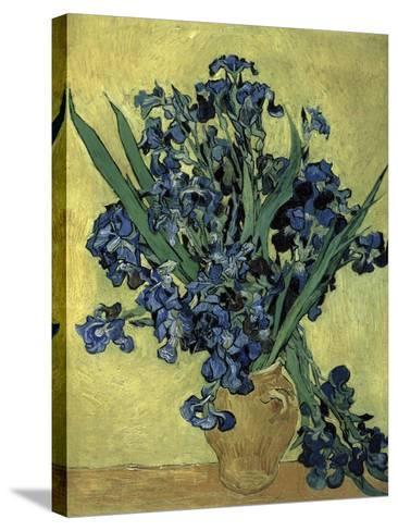 Van Gogh, Irises(1890)--Stretched Canvas Print