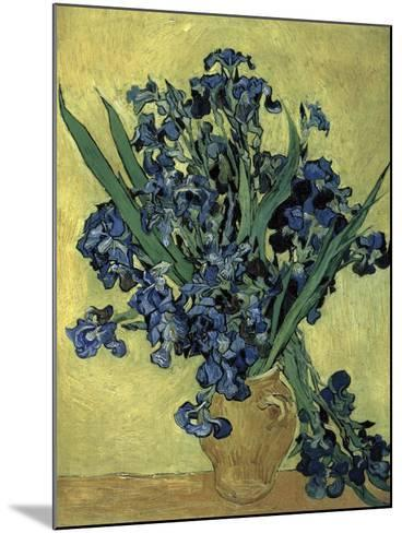 Van Gogh, Irises(1890)--Mounted Giclee Print