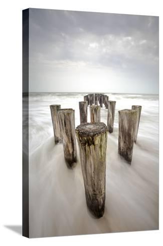 Tropical Storm Debbie-Dennis Goodman-Stretched Canvas Print
