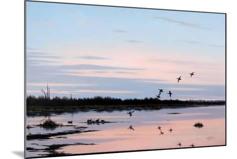 Sunset March Black Ducks-Wilhelm Goebel-Mounted Giclee Print