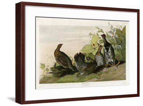 Spotted Grouse--Framed Art Print