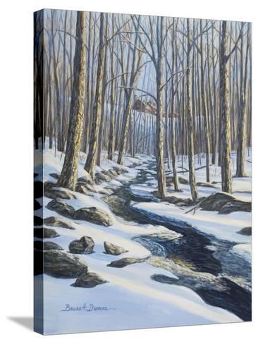 Woodland Farm Stream-Bruce Dumas-Stretched Canvas Print