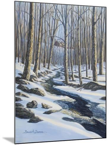 Woodland Farm Stream-Bruce Dumas-Mounted Giclee Print