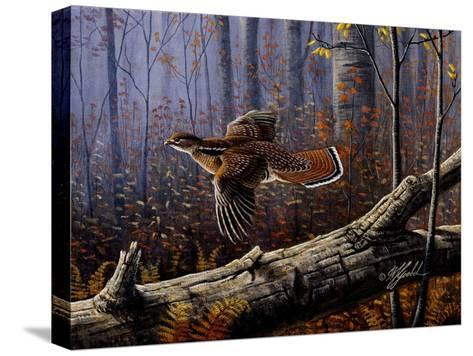 Windfall Glider - Ruffed Grouse-Wilhelm Goebel-Stretched Canvas Print