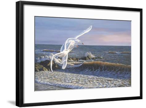 Wave Skimmers-Bruce Dumas-Framed Art Print
