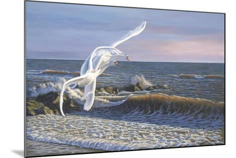 Wave Skimmers-Bruce Dumas-Mounted Giclee Print