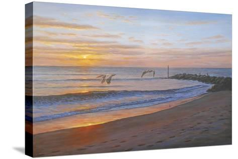 Wings over Captiva-Bruce Dumas-Stretched Canvas Print