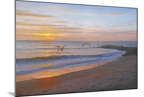 Wings over Captiva-Bruce Dumas-Mounted Giclee Print