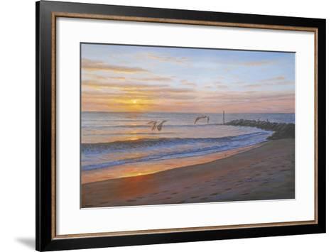 Wings over Captiva-Bruce Dumas-Framed Art Print