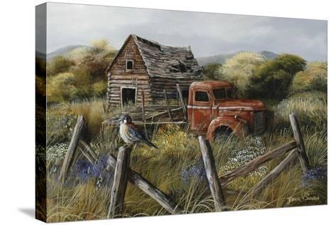 Well Worn Perch-Trevor V. Swanson-Stretched Canvas Print