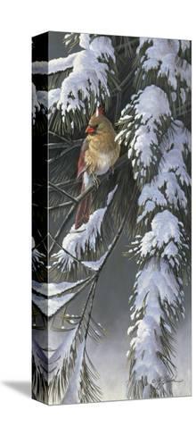 Winter Light 2-Wilhelm Goebel-Stretched Canvas Print