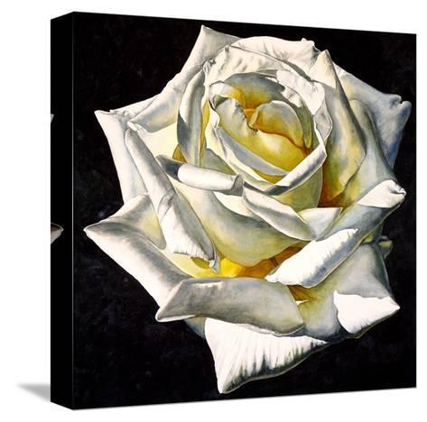 White Rose- Yellow Center-Laurin McCracken-Stretched Canvas Print