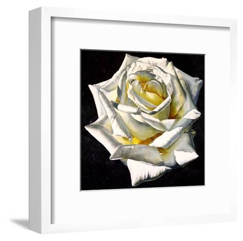 White Rose- Yellow Center-Laurin McCracken-Framed Art Print