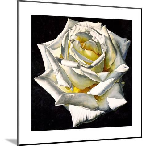 White Rose- Yellow Center-Laurin McCracken-Mounted Giclee Print